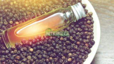 Kara Biber Yağı